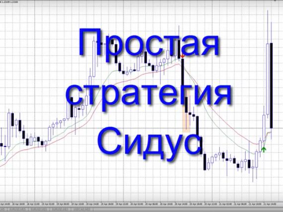 Торговля с индикатором Сидус