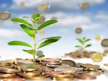 Правила управления частными инвестициями