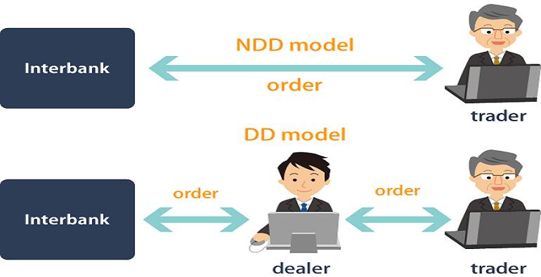 NDD model