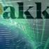 Bakkt запускает опционные контракты на биткойны