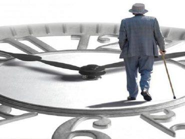 Управление пенсионными фондами: как распоряжаются пенсионными отчислениями профессиональные управляющие