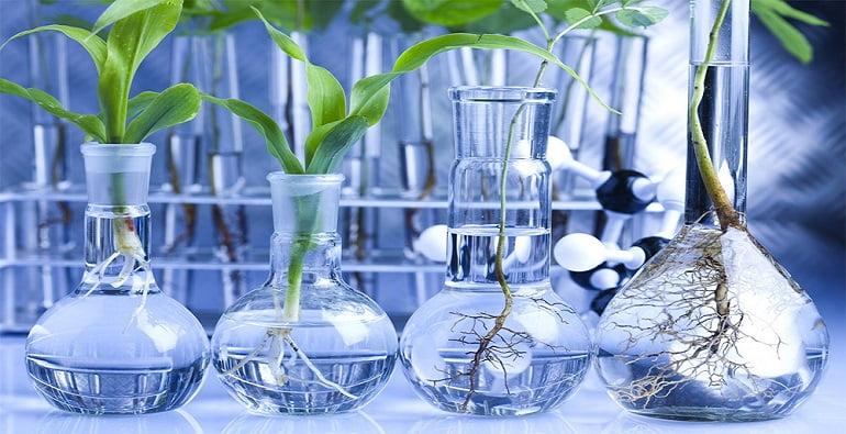 инвестиции в биотехнологии
