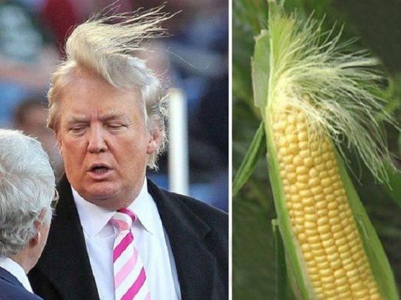 А вдруг Трамп все-таки победит?
