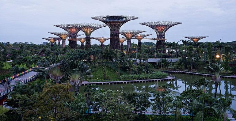 высокие технологии в Сингапуре